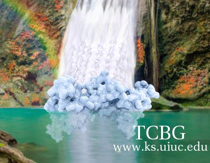 TCBG Calendar 2016.